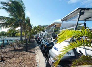 davis islands golf cart