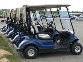 Gulf Breeze Golf Cart Laws