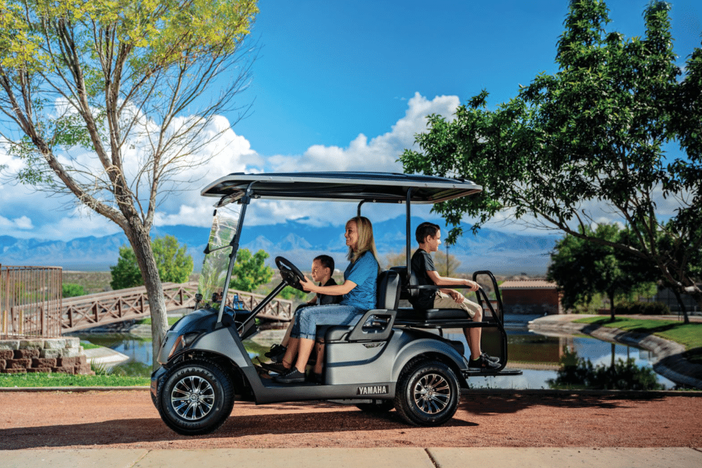 2020 Graphite Yamaha Golf Cart
